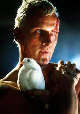 """Blade Runner cartel Rutger Hauer """"lágrimas en la lluvia"""" Pared Arte Impresión Foto Foto A3 A4"""