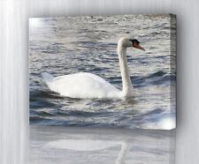 Ihr Bild Foto Wunschmotiv auf GLÄNZENDE Leinwand , Kunstdruck, Geschenk