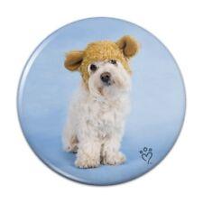 bichon maltese ebay rh ebay ie dog in house clipart dog in house sticker