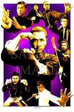 DONNIE YEN ART #1 heroic kung fu art ip man iron monkey flashpoint special id