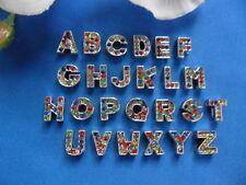 Strass (V) Buchstaben Bunt 12 mm A-Z Perle Beads Silber ABC Halsband Hund Katze