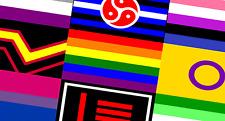 LGBT Rainbow Pride & Sexual Identity Flags 5'x3' (150cm x 90cm) - Now 88 Designs
