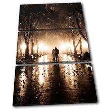 Park Couple Trees Love TREBLE LONA pared arte Foto impresion