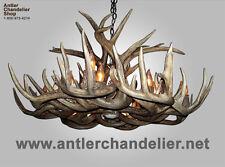 OBLONG REAL XL ANTLER WHITETAIL DEER CHANDELIER, 8 LIGHT, MTXLOVAL,  RUSTIC LAMP