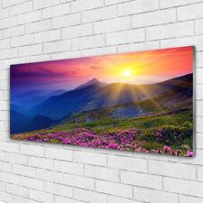 Glasbilder Wandbild Druck auf Glas 125x50 Gebirge Blumen Wiese Landschaft
