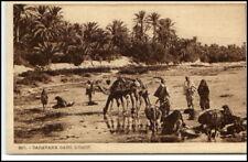 AFRIKA Africa Kamel Wüste Beduine Oase Oasis ~1910/20