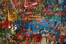 Vinyl Studio Backdrops Photo Background Fashion Colored Graffiti Walls Street LB