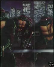 Rare TMNT Collected Book Volume 1 Ninja Turtles 1988 HC