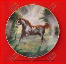 "Unbridled Spirit ""Painted Sunrise"" Collectors Plate by Chuck DeHann - MIB"