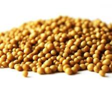 bamboo fertilizer SUPER FOOD potassium nitrogen OSMOCOTE PRO 4-5 various amounts