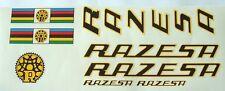 Razesa complete set of decals vintage Spanish