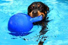Jolly Ball Spielball für Hunde, 10 cm