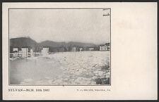 1907 Sylvan, Pa, Flood  Post Card