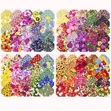 Paquetes de tela precuts scraps 10x10cm patchwork sustancias charm packs-flores florecitas