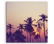 Landschaftsfotografie – Silhouette von Palmen bei Sonnenaufgang auf Leinwand