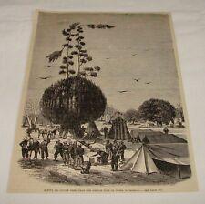 1876 magazine engraving ~ BOUL or CHEESE TREE, Thies, Senegal