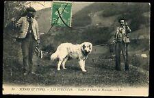64 SCENES ET TYPES guides et chien de montagne      (4)