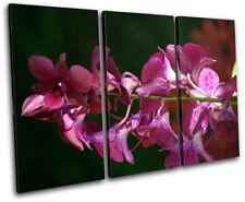 Orchids Flowers Floral TREBLE TOILE murale ART Photo Print