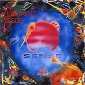 Sense, Lightning Seeds, Very Good