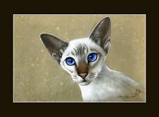Siamois chat oriental beauty imprimer par je garmashova