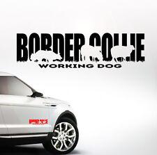 Auto Aufkleber BORDER COLLIE WORKING DOG Hund Hunde Wilsigns SIVIWONDER