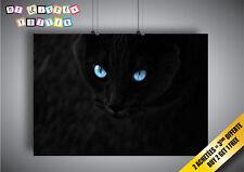 Poster Gatto Nero Occhi Blu