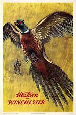 1960's WINCHESTER CACCIA FUCILE Pubblicità POSTER A3 stampa