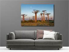 Cuadro pinturas decoración en kit Paisaje árboles ref 58778302
