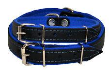 Piel Auténtica Collar de Perro Negro Brillante con Azul Felpa Forro Hecho a Mano