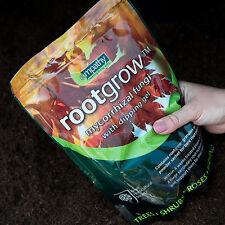 Rootgrow Gel RHS Fertiliser for bareroot hedge + pot plants hedging 5 sizes!