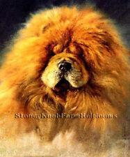 Chow Chow Portrait ~ Vintage Dogs ~ Cross Stitch Pattern