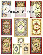 Quran Surah Yasin Rehman Yaseen Baqara Muzamil Waqia Noorani Qaida & Much more