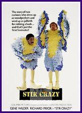 Stir Crazy   Comedy Movie Posters Classic Cinema