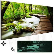 LEINWAND BILDER Wald Natur Landschaft Wandbilder xxl Wohnzimmer Nachleuchtend