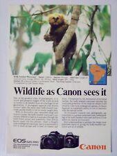 1988 Canon EOS 620/650 SLR Camera Marmoset Magazine Print Advertisement Page