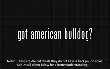 (2x) got american bulldog? Sticker Die Cut Decal vinyl