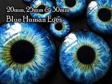 Taxidermy Glass Dragon, Doll, Teddy Eyes, Blue 20mm, 25mm, 30mm