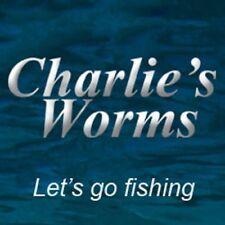 CHARLIE'S WORMS 10 COUNT PACK SALT BANG-O SENKO TYPE BASS BAIT - VARIOUS COLORS