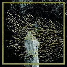 NEW Engravings (Audio CD)
