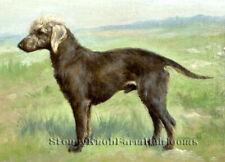 A Bedlington Terrier ~ Dogs, Gustav Muss-Arnolt ~ Cross Stitch Pattern