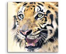 """Stickerei Stoffbild Stickbild /""""Tiger in Goldtönen/"""" chinesisches Bild"""