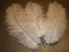 lot de 3 plumes autruche blanche 32 cm