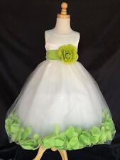Ivory Tulle Apple Green Rose Petal Dress Flower Girl Summer Easter Party #24