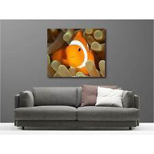 Gemälde leinen deko rechteckig fisch clown 5730250