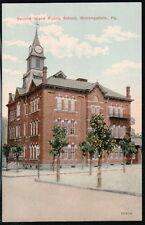 MONONGAHELA PA Second Ward Public Grammar School Vtg Postcard Old Town View PC