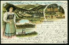 Niederbronn / Elsass, Farb-Litho, 1898