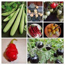 Gemüse Peperoni F1 Apache 10 Samen