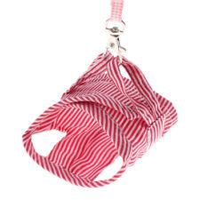 Lapins Pet Chest Laisse Collier Colliers Harnais Corde Traction