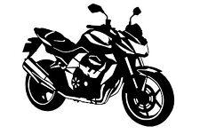 Kawasaki Z 750 (2009) Pegatina