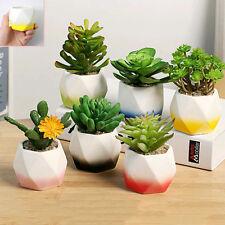 Mini Hexagon Ceramic Succulent Planter Flower Plant Porcelain Pot Home Garden